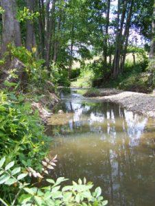 Ruisseau de la Jousselinière (vers Frémerit)